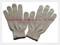 Cotton Glove 3