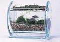 有机玻璃宠物用品,压克力鱼缸 2