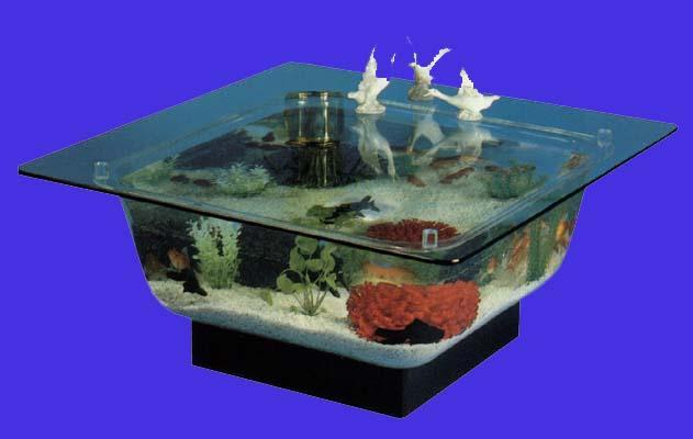 Coffee Table Aquarium 4
