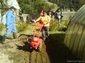 8002 Gasoline tiller /Cultivator 3