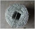 Barbed wire & razor wire