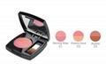 shining charming two-color blush 4g