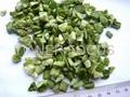 Freeze dried green bell pepper
