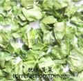脫水蔬菜 1