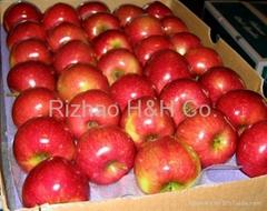 Yantai Fresh Red Fuji Apple