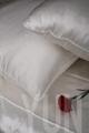 Silk Bedding Set 2