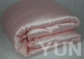 Silk Pillow and Pillow Case