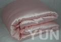 Silk Pillow and Pillow Case