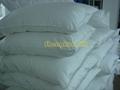 Silk Bedding Set /Silk Quilt and Quilt