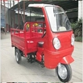 New Style Cargo Tricycle