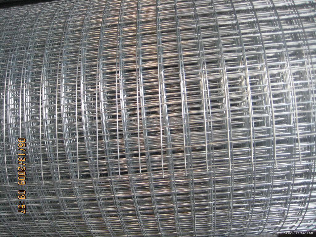 Welded Wire Mesh : Welded wire mesh bright pearl china manufacturer