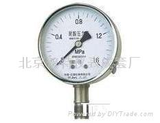 耐酸压力表YTS100.