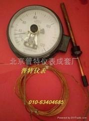 WTZ/WTQ288压力式电接点温度计