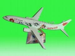 飛機模型B737-800