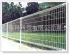 供应低价金属丝网 护栏网