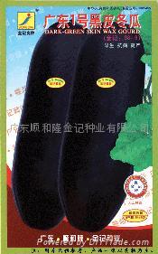 广东一号黑皮冬瓜种子98-9 1