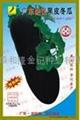 广东杂交黑皮冬瓜种子F-668 1