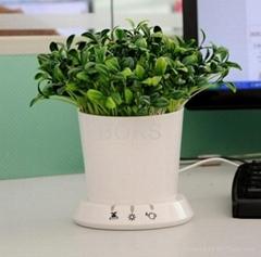 USB flowerpot