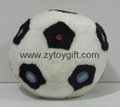 Football toy with radio function