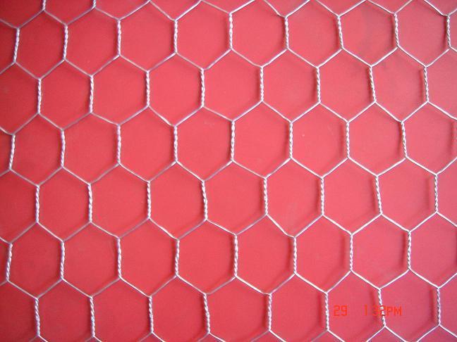 hexagonal wire mesh chicken wire - 141 - Anxin (China Manufacturer ...
