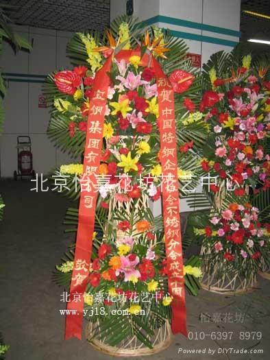 大型圣诞树出租 大型圣诞树租赁 13521773655 北京植物租赁 绿植租摆