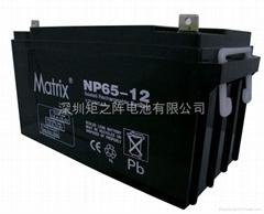 12V65AH蓄電池
