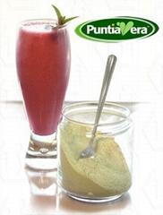 PuntiaVera® Organic Nopal Powder