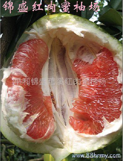 紅肉蜜柚之爭之真相 3