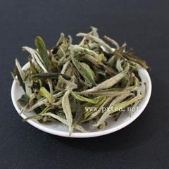 2011福鼎白茶白牡丹廠家直銷