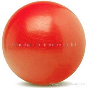 gym   ball 1