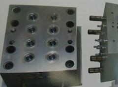 Liquid Silicone Mold