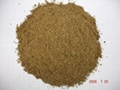 Fish Meal Producer in china