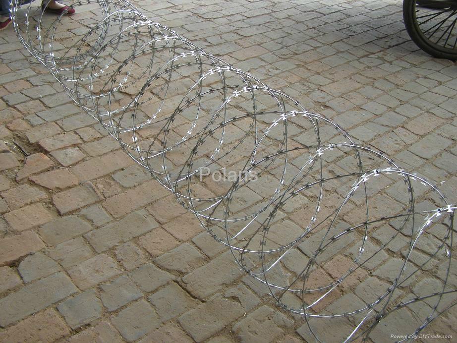 concertina wire 4