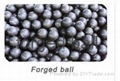 Supply Forged Ball