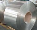 tinplate, tin plate, ETP, SPTE, tinplate coil, tinplate sheet 3