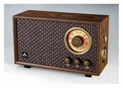 R301 Hi-Fi FM/AM Classic Radio