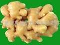 超临界液体姜辣素40%