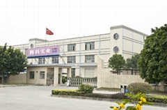 Sunfrom Pro Lighting Equipment Factory