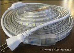 LED Flexible strip 110V-220V