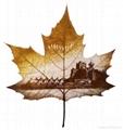leaf carving 07