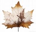 leaf carving 08