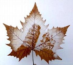 leaf carving 013