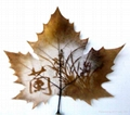 leaf carving 013