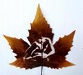 leaf carving 0117