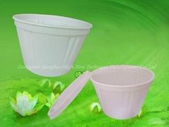 Biodegradable Noodle Bowl (HHW-07)