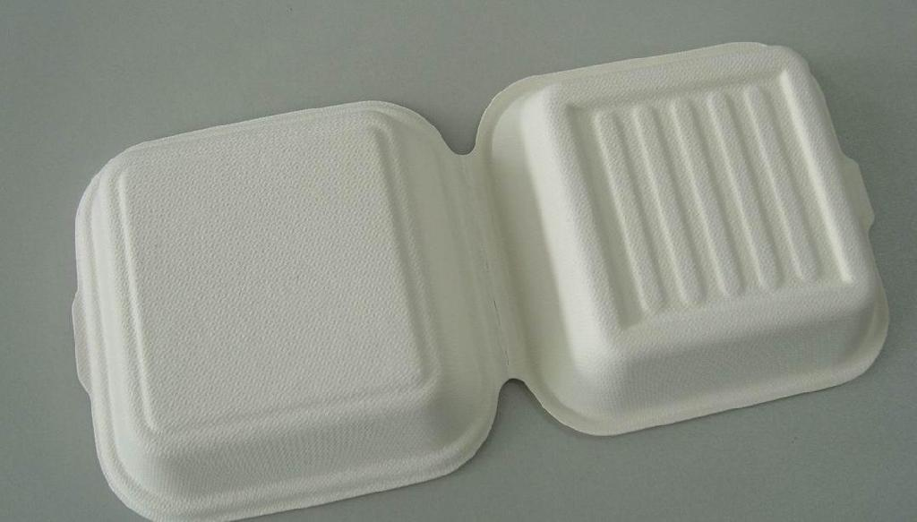 Disposable tableware 2