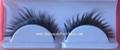 eyelash extension 5