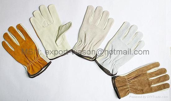 Driver Gloves 1