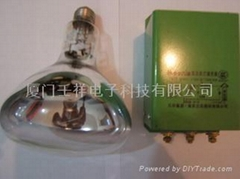 飞利浦EYE JCR 12V 100W卤素灯