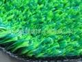 供應人造草、AJ-CP001-5、人造草坪、休閑草、休閑草坪 2